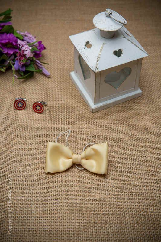 Boys Gold Elasticated Satin Dickie Bow