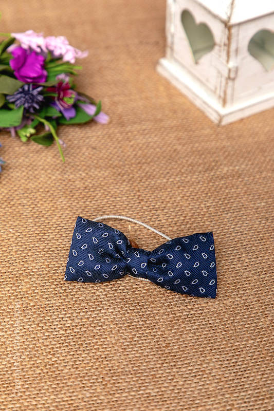 Boys Navy Pattern Elasticated Satin Dickie Bow